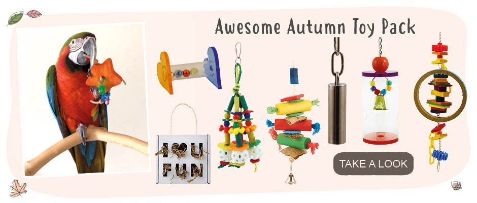 Click for the autumn toy pack
