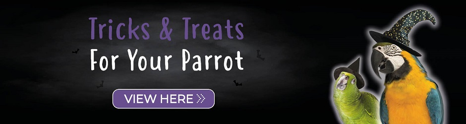 Click for Halloween goodies