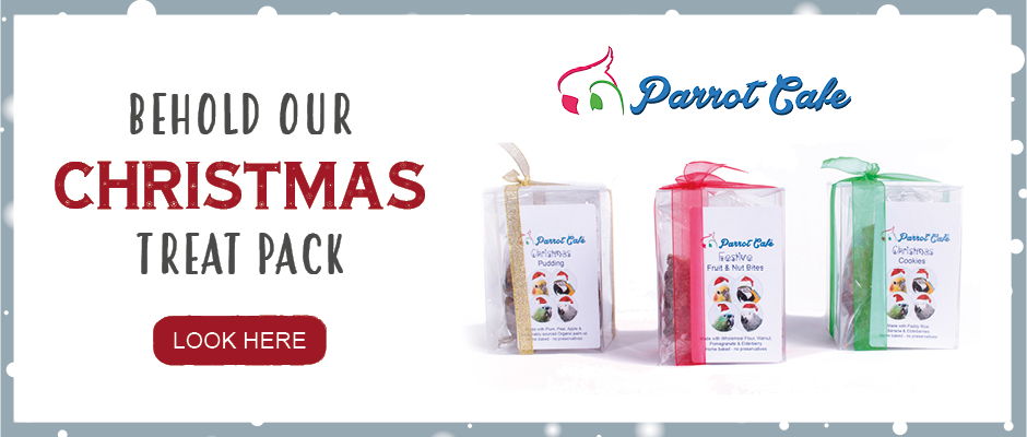 Click for the Christmas treat pack