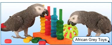 View African Grey Toys
