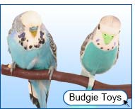 View Budgie Toys