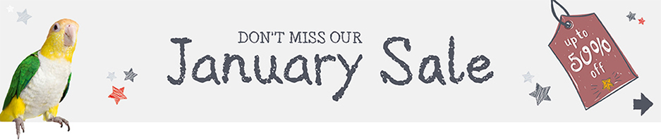 January Sale Now On - Click to see offers
