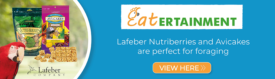 Click to order Lafeber