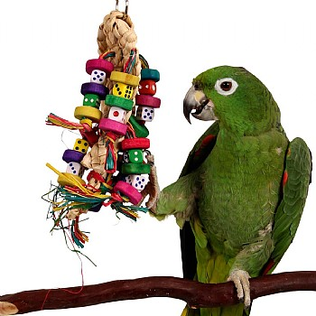 Northern Parrots Odds On - Beak Pleaser Parrot Toy