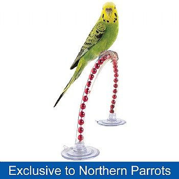 Happy Parrot Perch - Small
