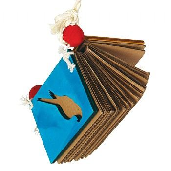 Book Worm Parrot Toy