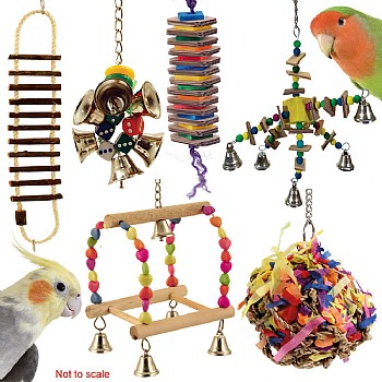 Cockatiel & Small Parrot Toy Pack