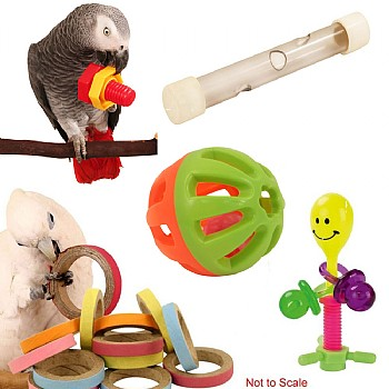 Foot Toy Kit for Parrots
