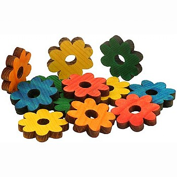 Coloured Pine Wood Daisies - Parrot Toy Parts  - 12 Pack