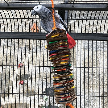 Stacks of Shredding - Large - Wood & Cardboard Parrot Toy