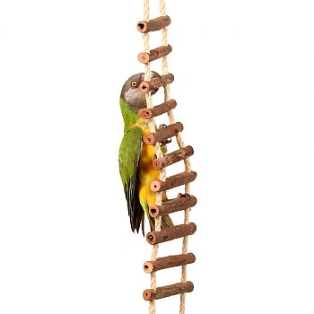 Natural Log Ladder Bridge Parrot Toy - Large