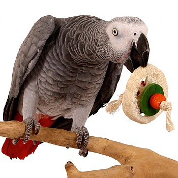 Loofah Disc Parrot Foot Toy