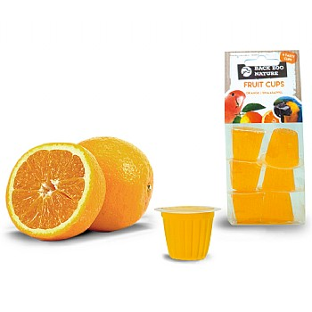 Fruit Cups Orange - Jelly Parrot Treats - Pack of 6