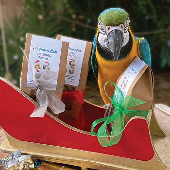 Parrot Cafe Christmas Treat Pack