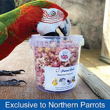 Parrot Cafe Parrot Popcorn - Beetroot