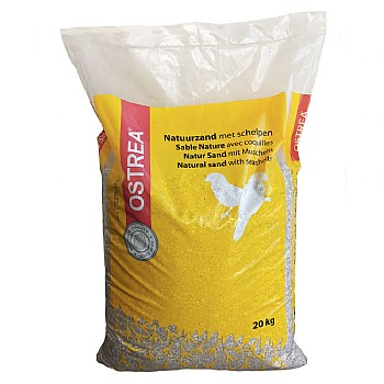Bird Sand With Oyster Shell