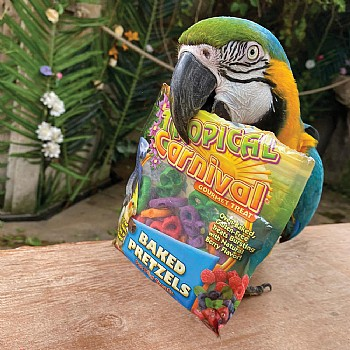 Brown`s Baked Pretzels Parrot Treats