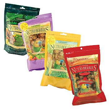 Lafeber NutriBerries Complete Parrot Food - Pack of 4