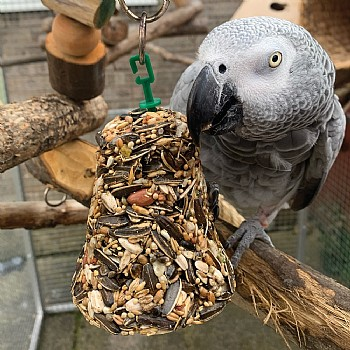 Johnsons Parrot Bumper Treat Seed Bell - 150g