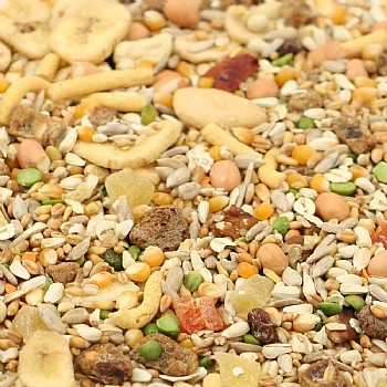 Tidymix Parrot Diet - High Quality Seed Blend