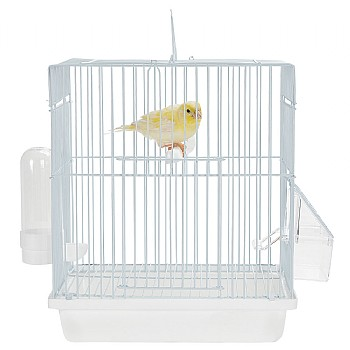 Rainforest Cages Mali - Small Bird Travel Cage - Ice White