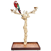 Java Duo Tree - Large - Natural Hardwood Parrot Playstand
