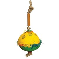 Woven Wonders Colourful Coconut Forager Parrot Toy