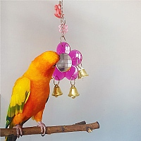 Looking Good Parrot Toy and Mirror
