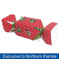 Christmas Cracker Surprise Parrot Toy