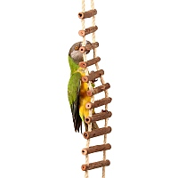 Natural Log Ladder Bridge Parrot Climbing Toy - Large