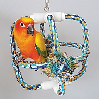 Parrot Orbit - Cotton Climbing Swing