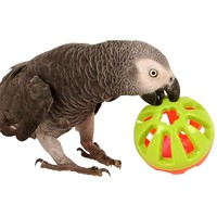 Jingle Ball Parrot Play Toy - Medium