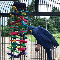 Rainbow Tower Wood and Rope Parrot Toy