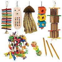 Jan Sale Half Price Parrot Toy Pack