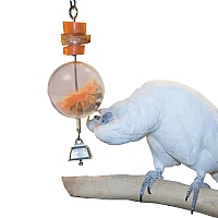 Foraging Sphere - Starter Creative Foraging Toy for Parrots