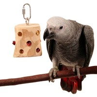 Foraging Fruit Rack - Hanging Toy For Parrots