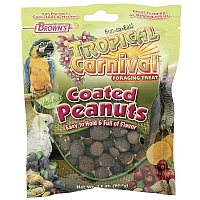 Brown`s Fruit and Vegetable Coated Peanut Parrot Treats