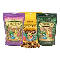 Small Parrot NutriBerries Complete Food - Pack of 3