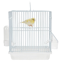 Mali - Small Bird Travel Cage - Ice White